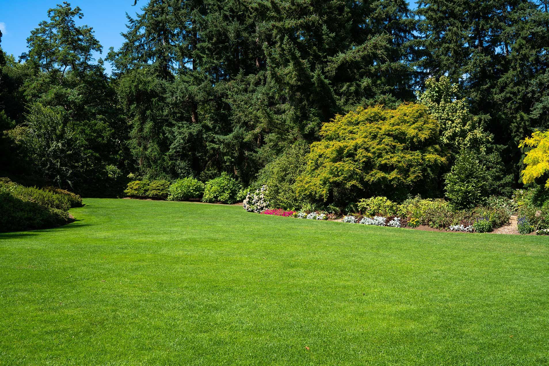 Grass-garden